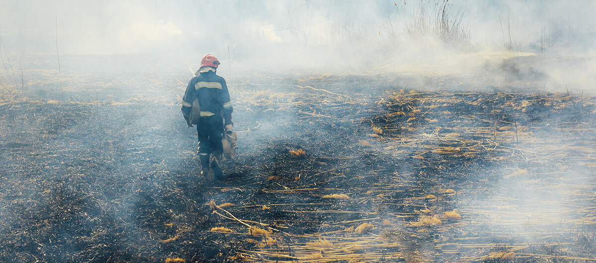 photo of firefighter walking in burned land